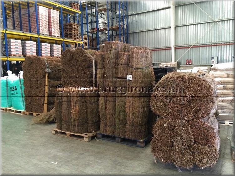 Fabricación brezo en rollos para vallas, tejados y parasoles
